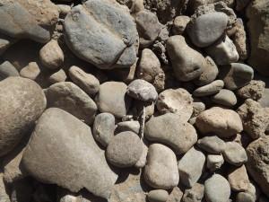 stones-1323243_960_720